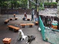 http://www.city.meguro.tokyo.jp/kurashi/sports_koen_yoka/koen/omoshiro/dobutsu_hiroba.images/fureai.jpg