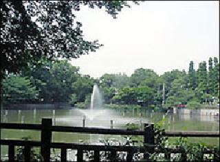 碑文谷公園の写真
